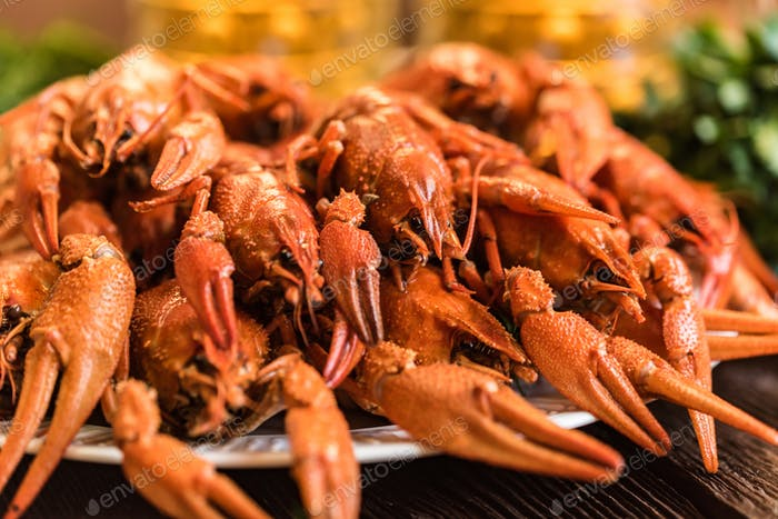 Boiled crayfish with beer on wooden background