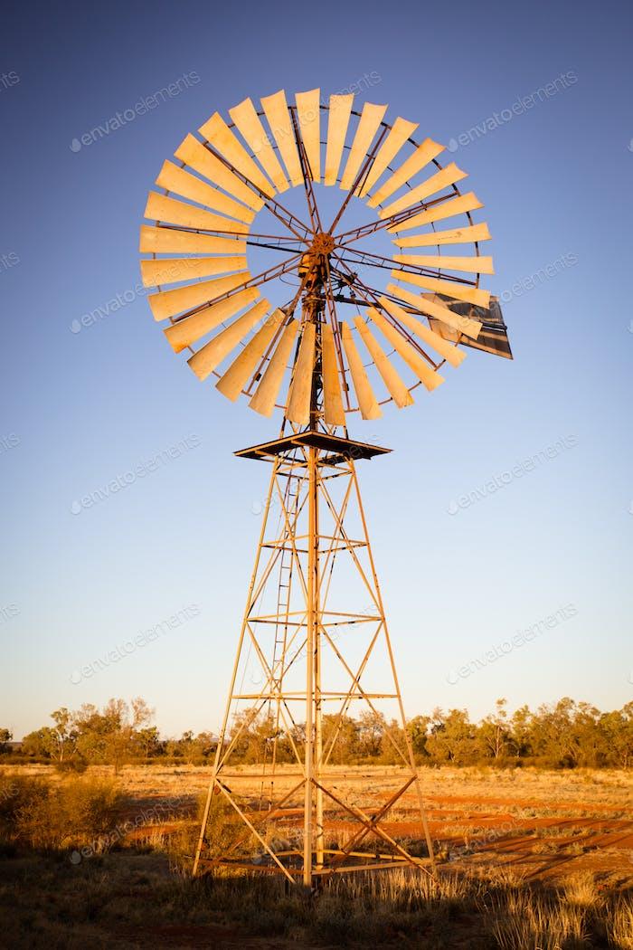 Australian Windmill