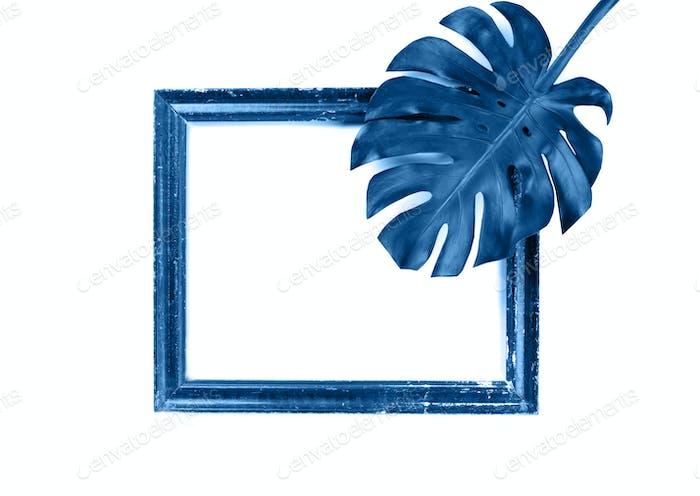 Blue leaves Monstera .Photo frame composition.
