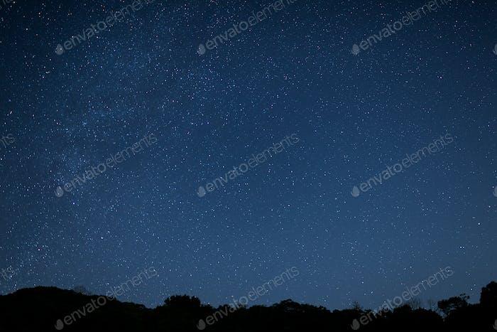 Estrella de noche