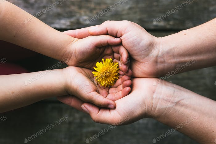 Parent and child hands handing flowers