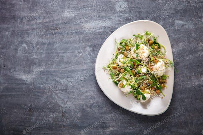 Rohe Sprossen Microgreens.Frischer grüner Salat mit Mozzarella