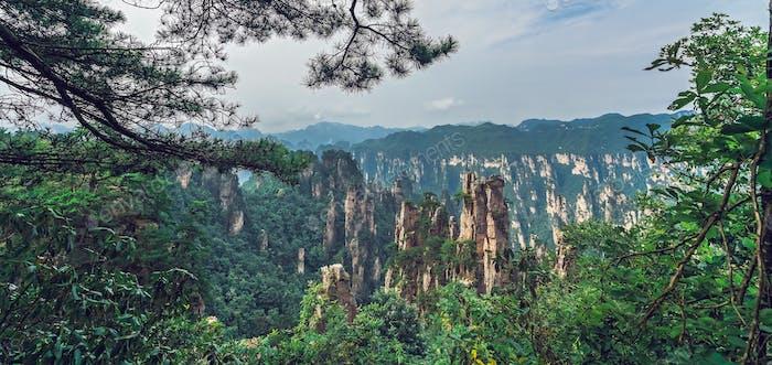 Landschaft von Stein Tianzi Gebirge Säulen in Zhangjiajie