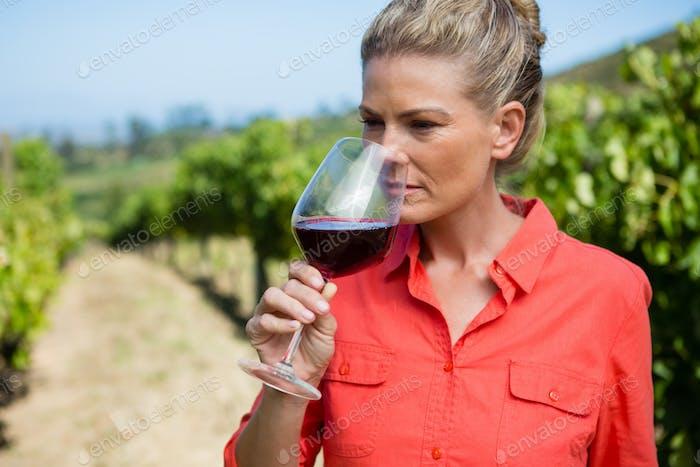 Female vintner smelling glass of wine