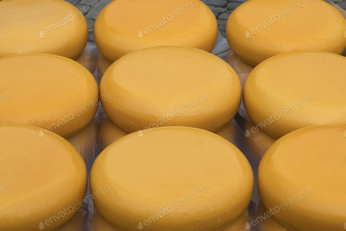 Whole yellow Dutch cheeses for sale on the market