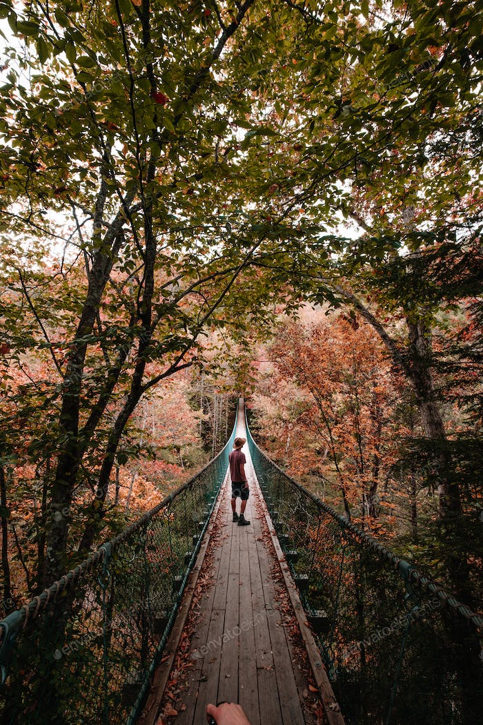 Silhouetted person on a suspension bridge
