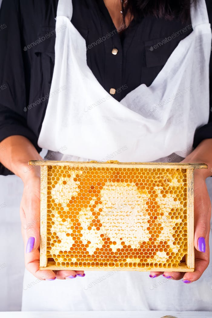 Honeycomb with organic honey. Female hands holding a honeycomb around a white background.
