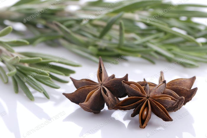 Bunch of rosemary and and anise stars
