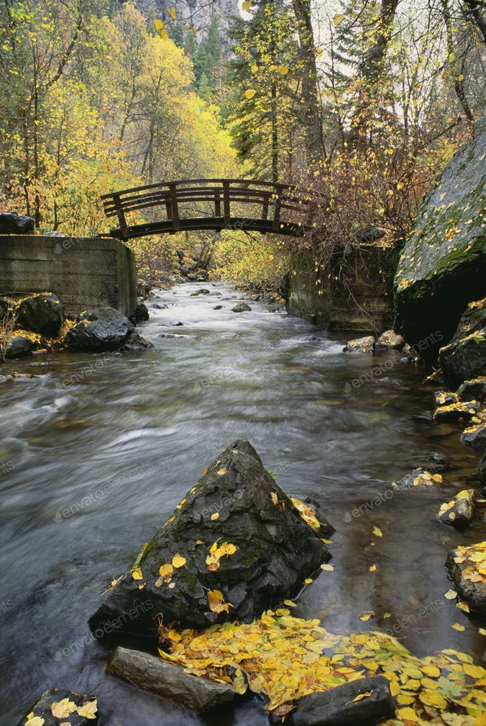 A river running through a canyon, small wood bridge, autumn foliage, and fallen leaves,