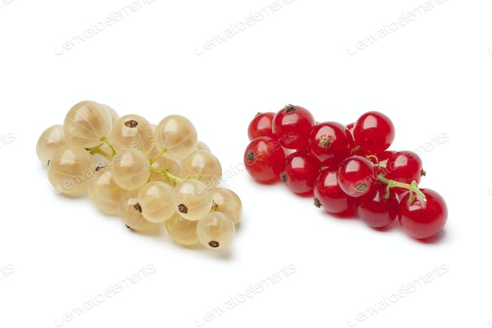 Fresh white and red currants