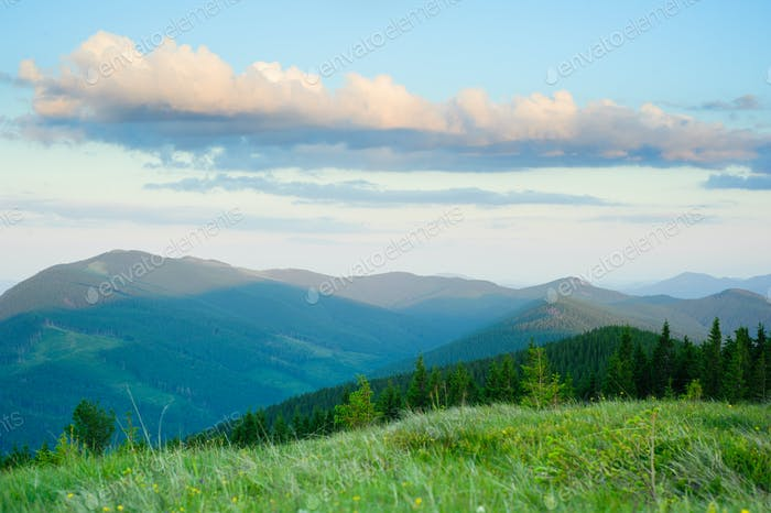 Morning in Carpathian