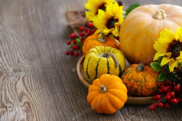 Still Life with Fresh Pumpkins