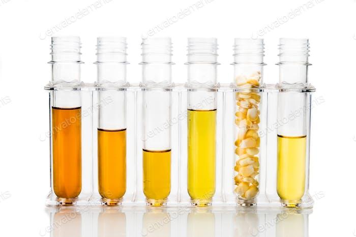 Maiserzeugter Ethanol Biokraftstoff mit Reagenzgläsern auf weißem Backgrou