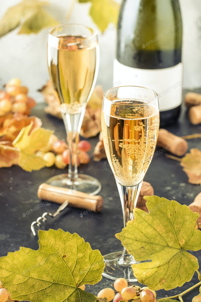 Champagne wine in glass background. Autumn still life, wine tasting table setting