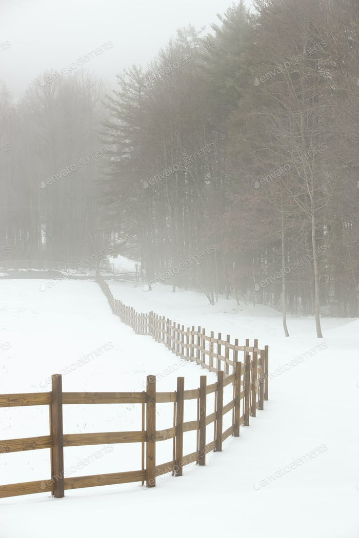 Fence in Pasture in Snow