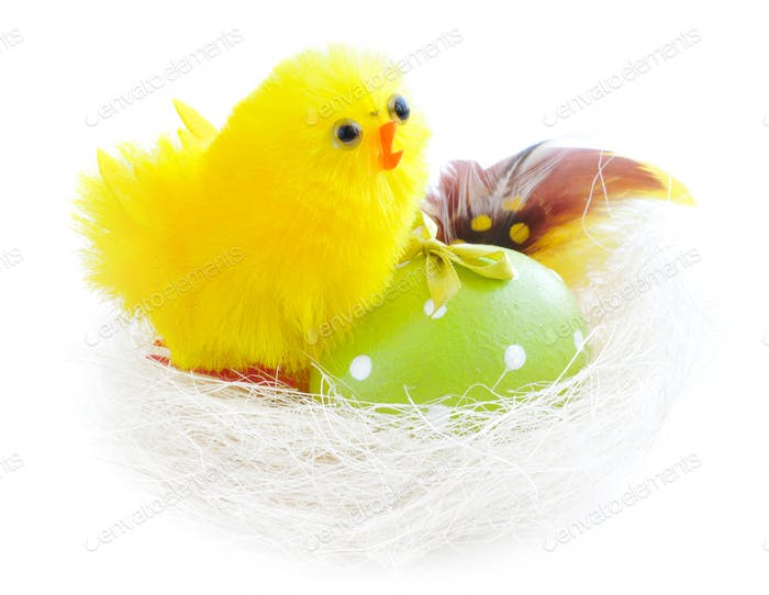 Easter egg and nest with chicken on white background