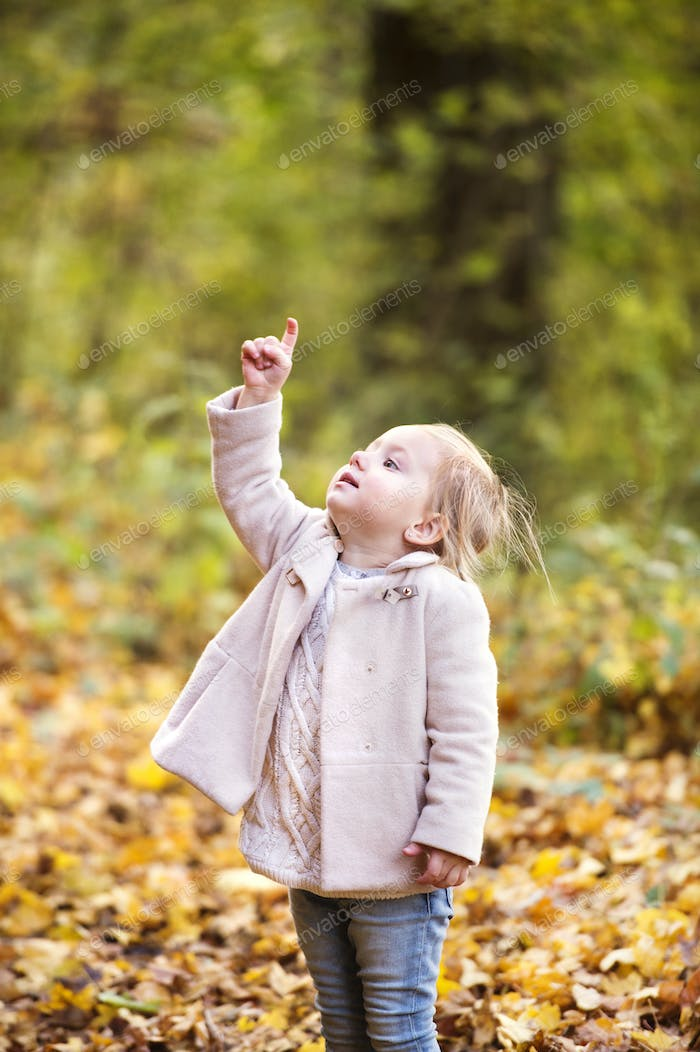 Cute little girl in pink coat in autumn forest.