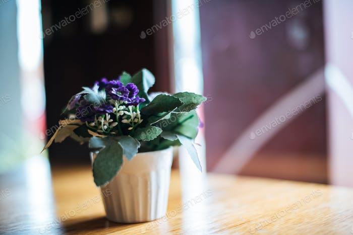 Flower in vase on table at coffee shop