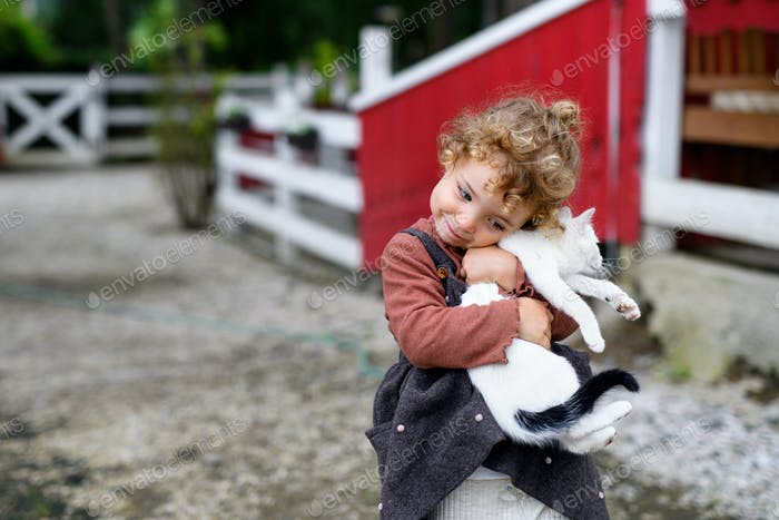 Kleines Mädchen mit Katze stehend auf dem Bauernhof, spielen