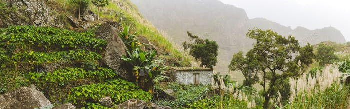 Santo Antao mountains with small cascade farm of lotuses