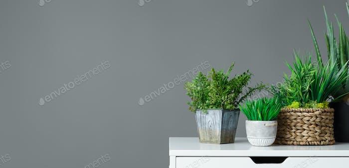 Office gardening concept