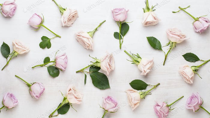 Floral pattern made of pink and beige roses on white background.