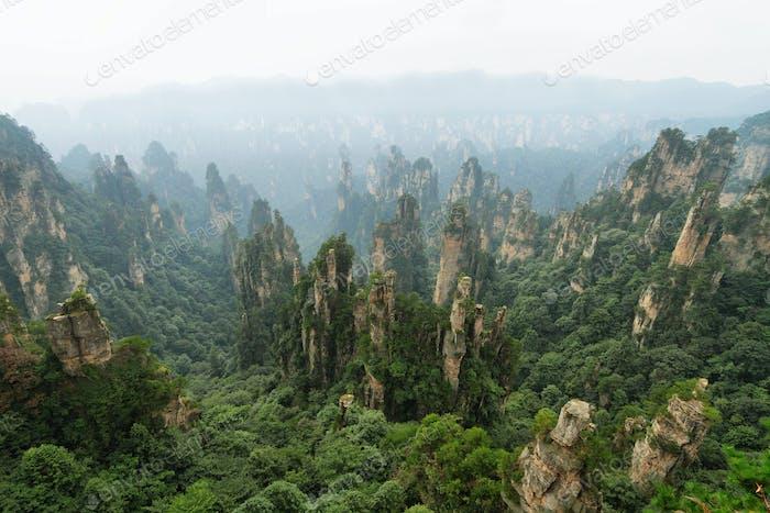 Impressive sandstone pillars in Yangjiajie area