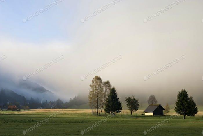 Misty landscape near Menzenschwand