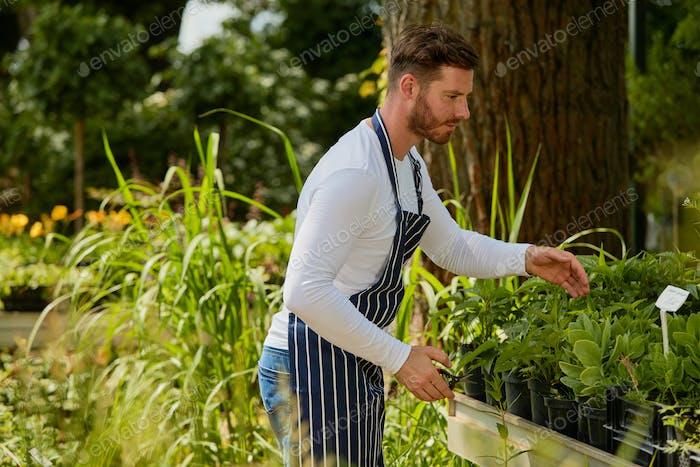 Wale gardener working with plants