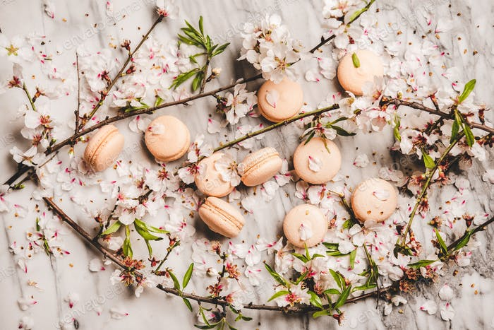 Flat-lay of sweet macaron cookies and spring blossom flowers