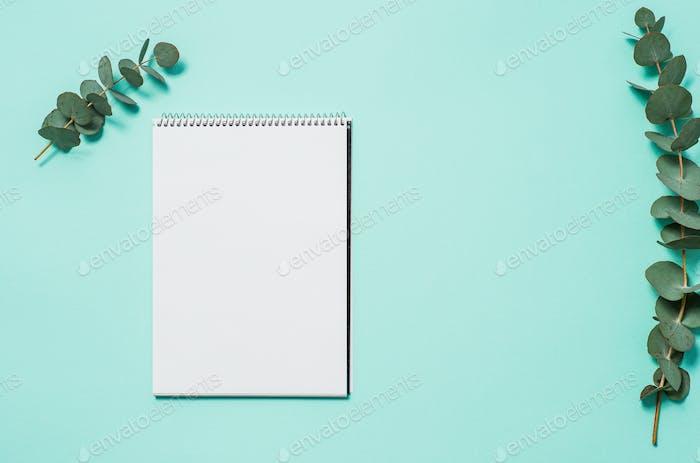 Blanko Notizbuch und Eukalyptus auf blauem Hintergrund