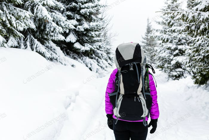 Woman hiking in winter woods with backpack