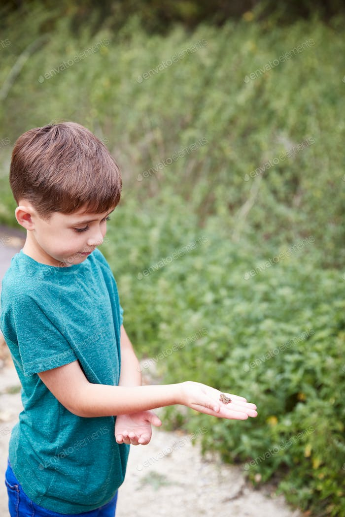 Boy Holding Small Frog At Outdoor Activity Camp Catch To Study Pond Life