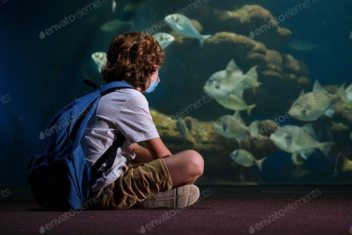Anonymous teenager looking at fish in aquarium