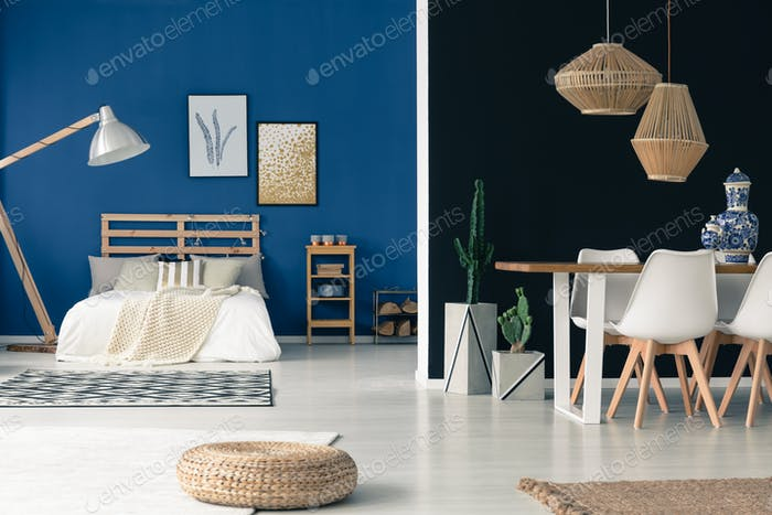 Cozy blue studio