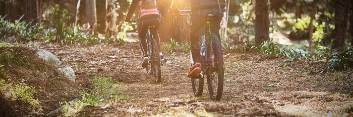 Rear view of biker couple cycling in countryside