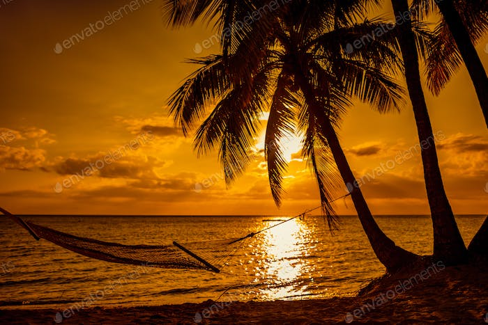 Silhouette of hammock and palm trees on a tropical beach at suns
