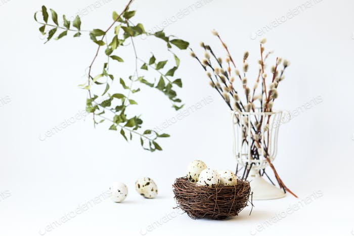 Easter composition. Holiday concept on white willow and quail eggs in the nest.