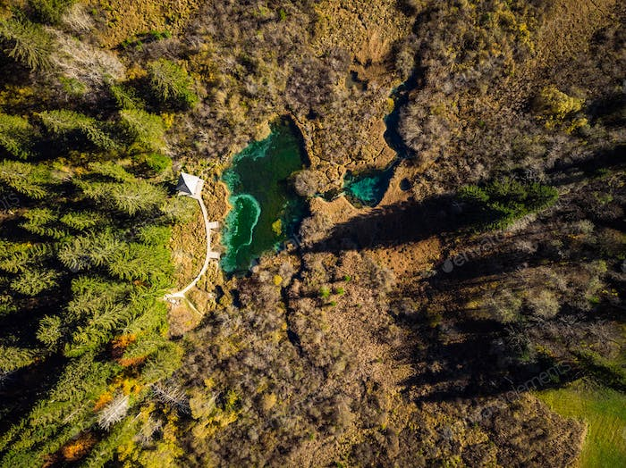 Colorful Zelenci natural reserve in Slovenia, aerial view in aut