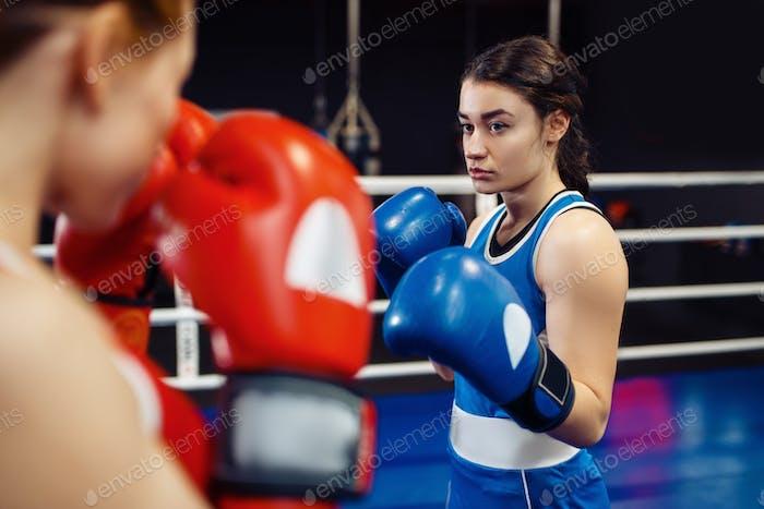 Frauen in Handschuhe Boxen auf dem Ring, Box-Training