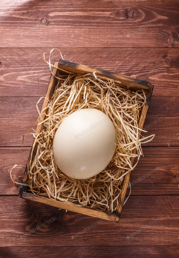 Ostrich egg on straw in wooden box, place for wording, dark background