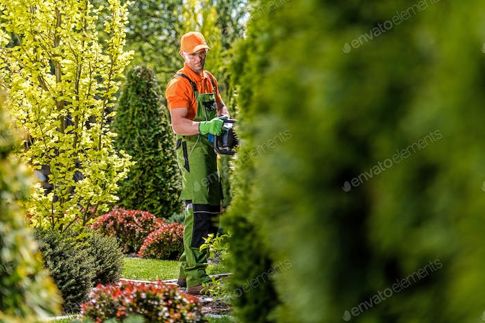 Hedge Trimming Work