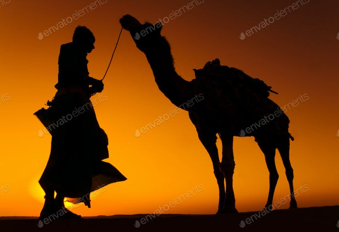Indigenous Indian Man with His Camel