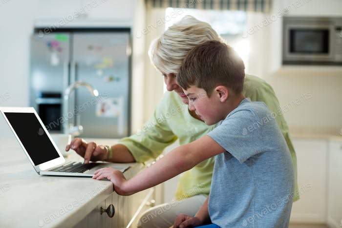 Grandson using laptop with grandmother
