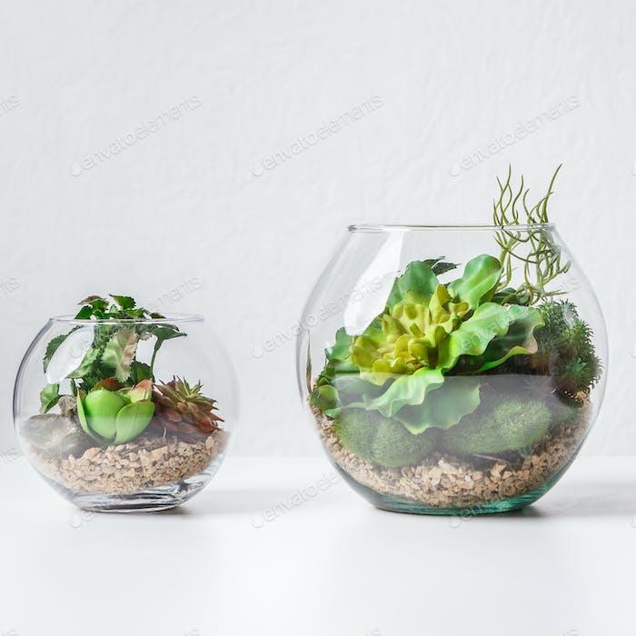 Forarium vases on table