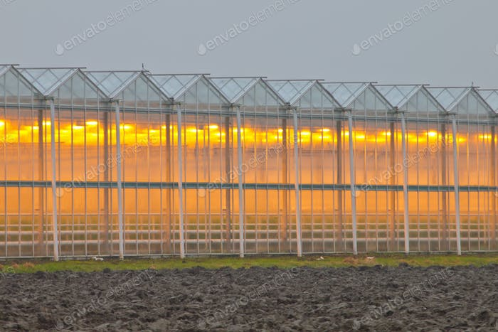 Exterior of a commercial greenhouse