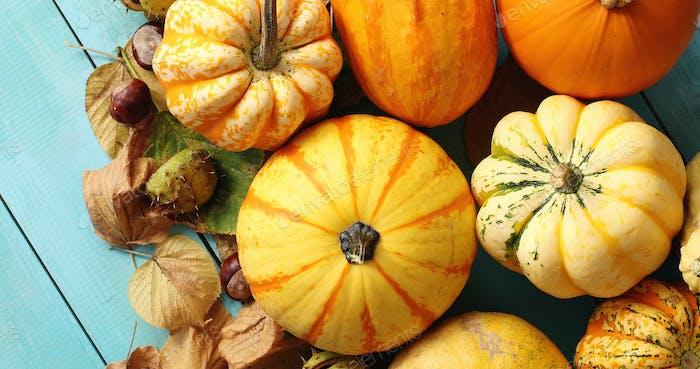 Pile of pumpkins decorated with leaves and chestnuts