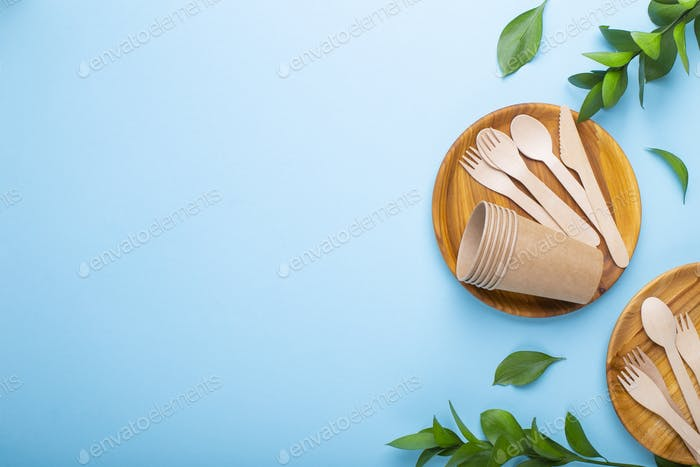 Eco-friendly tableware for food with green leaves