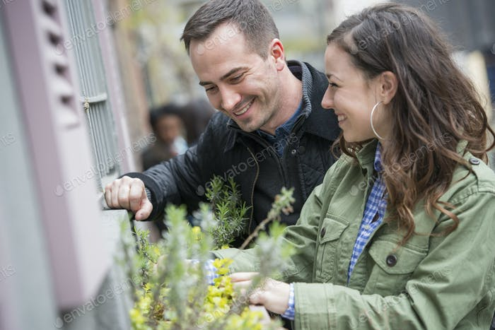 A man and a woman tending a window box on a city street. Spring flowers.