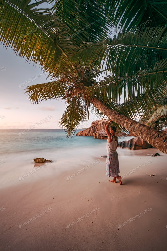 A woman lean against coconut palm tree in a gold sunset on a tropical sandy beach. La Digue